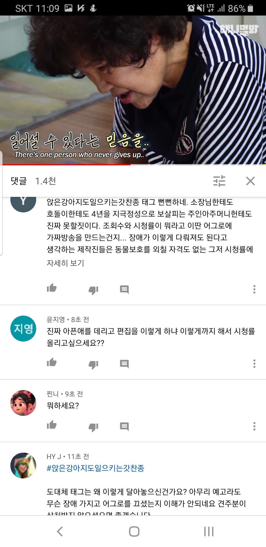 Screenshot_20200802-110927_YouTube.jpg 4년간 걷지못하는 개 호돌이 본방 후 상황